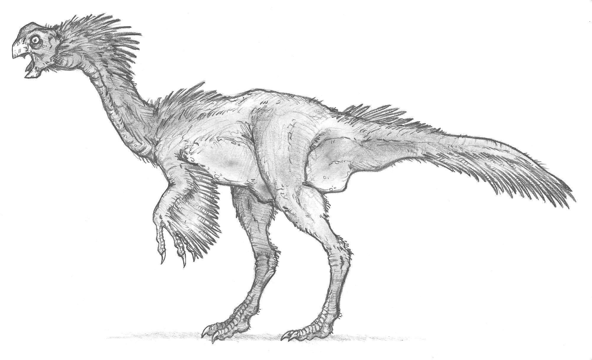 Oviraptoroid