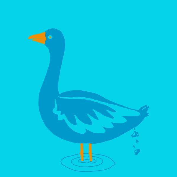 Tricolor Goose