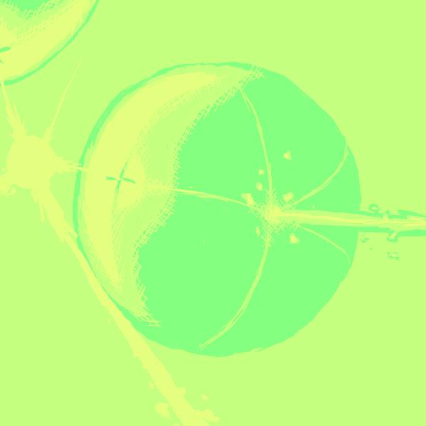 TriColor Pommegranate