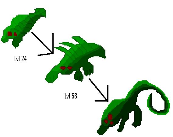 Full Evolution Chain