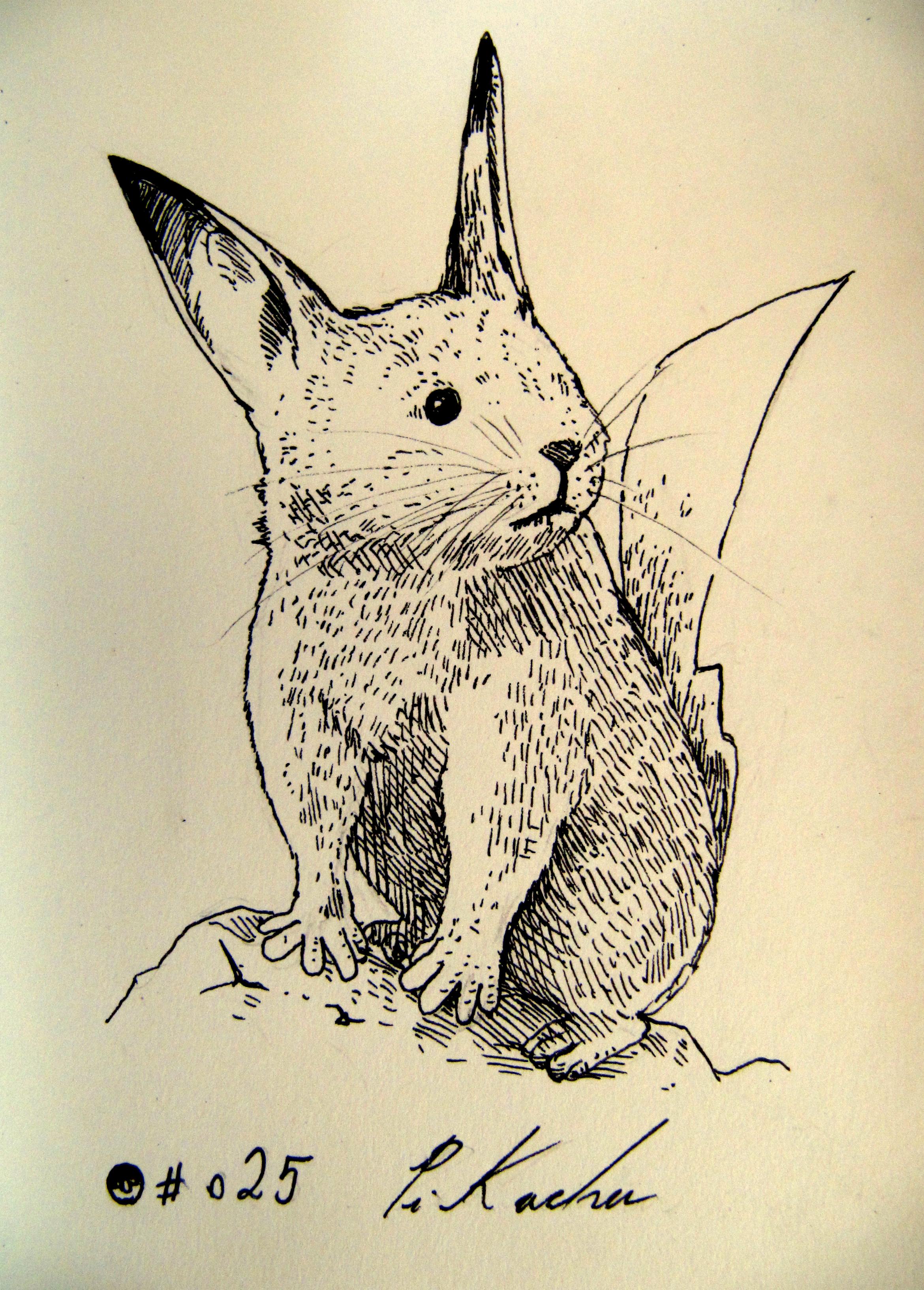 #025_Pikachu