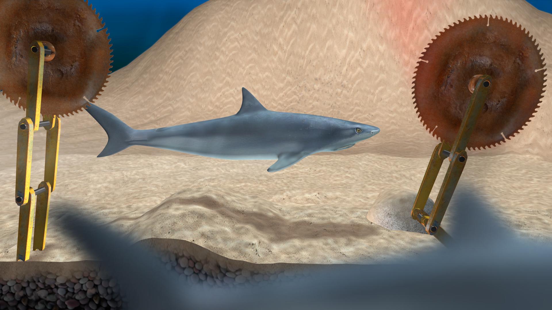 Shark vs Circlesaw