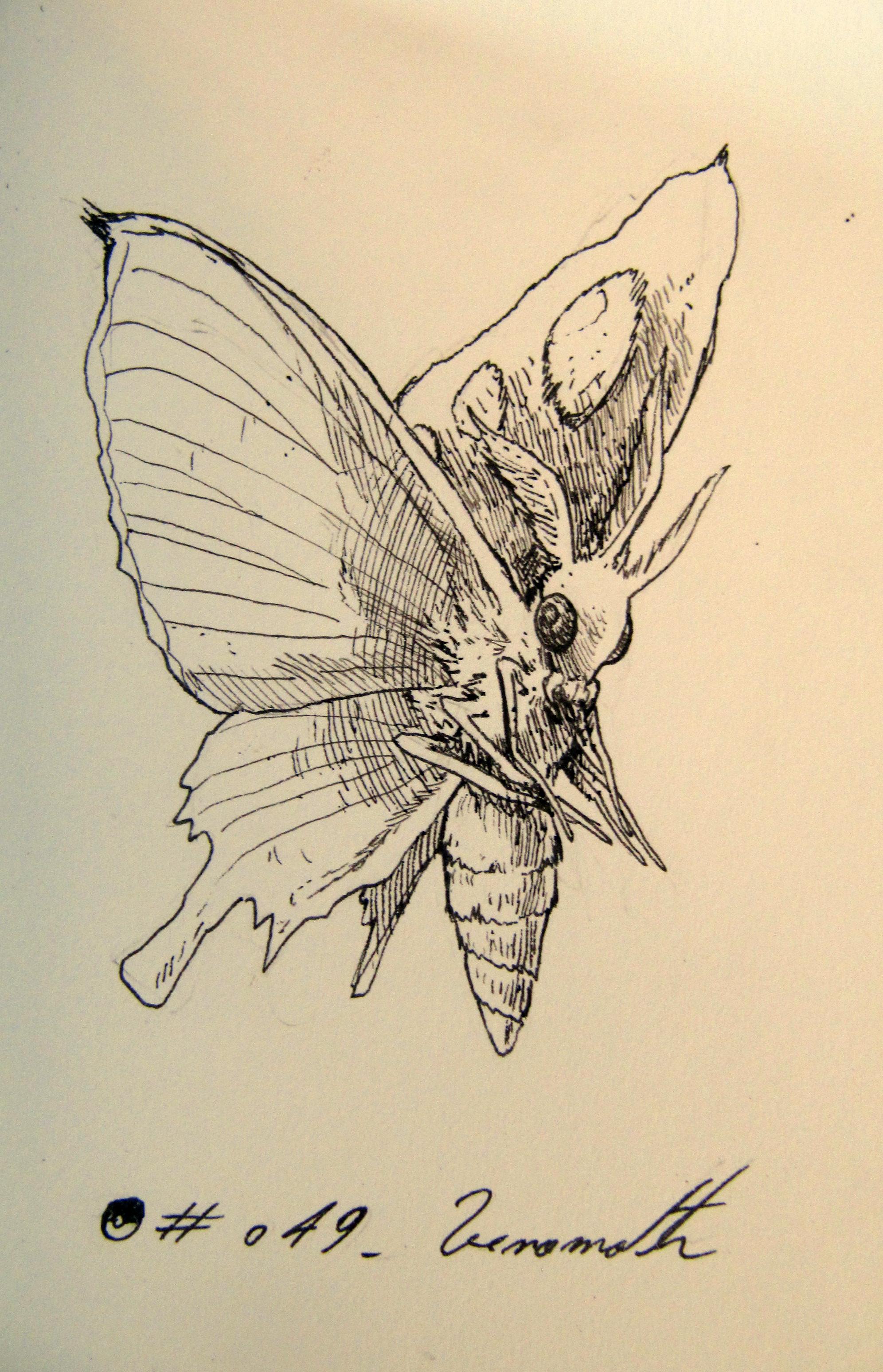 #049_Venomoth