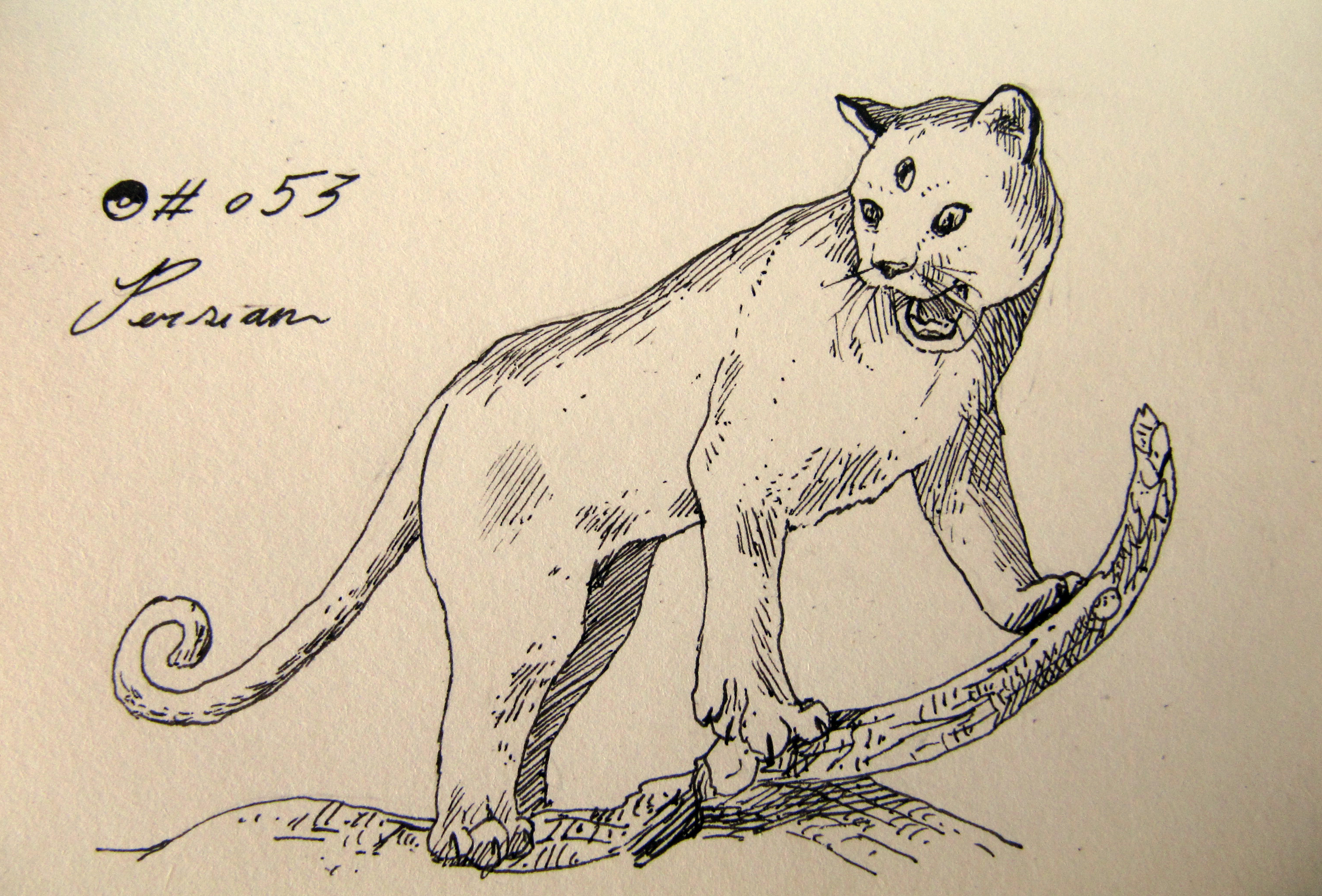 #053_Persian