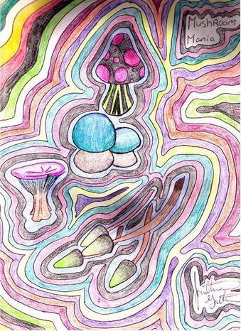 Mushroom Mania