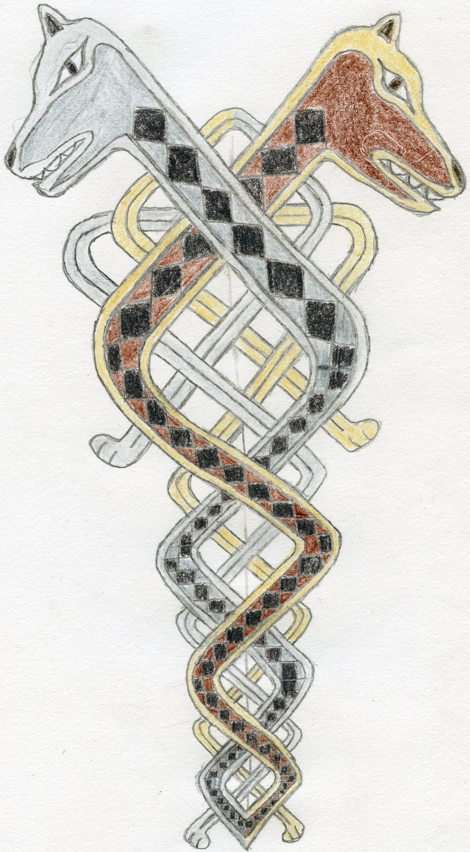 Celtic Hounds Knot Drawing
