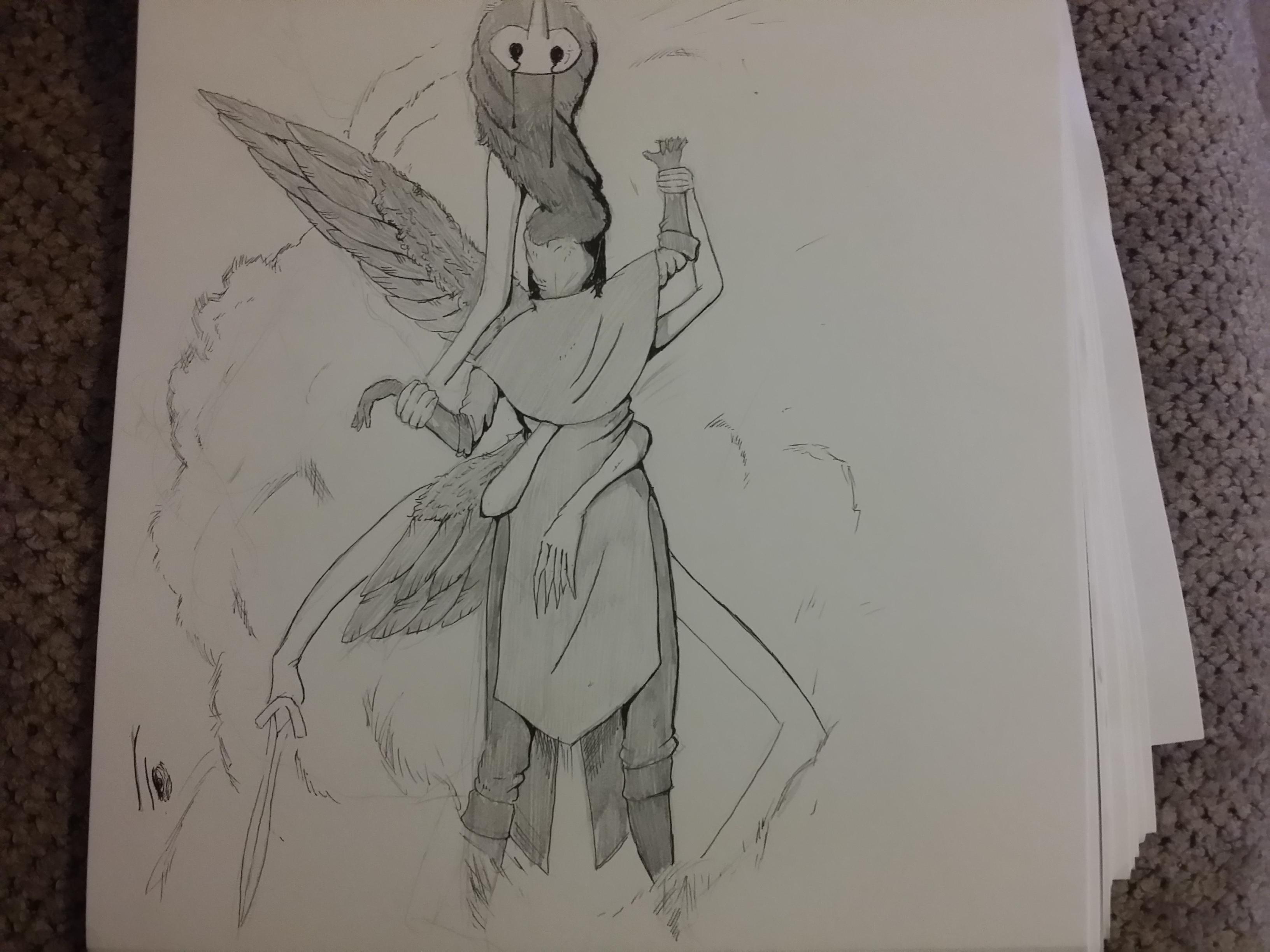 Corvus. 2nd form.