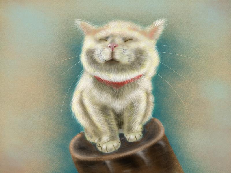 caturday smile