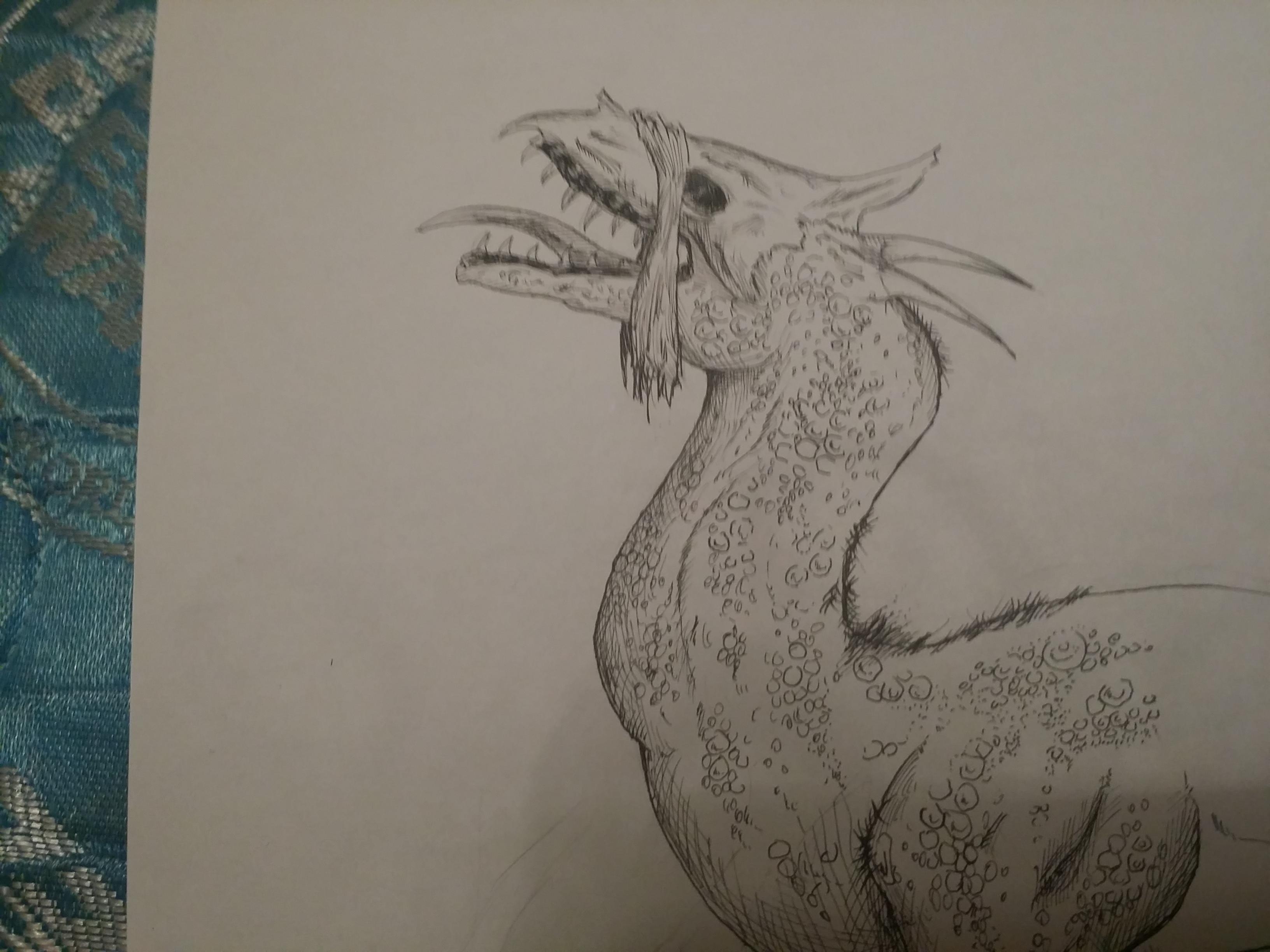 the niyghhogr