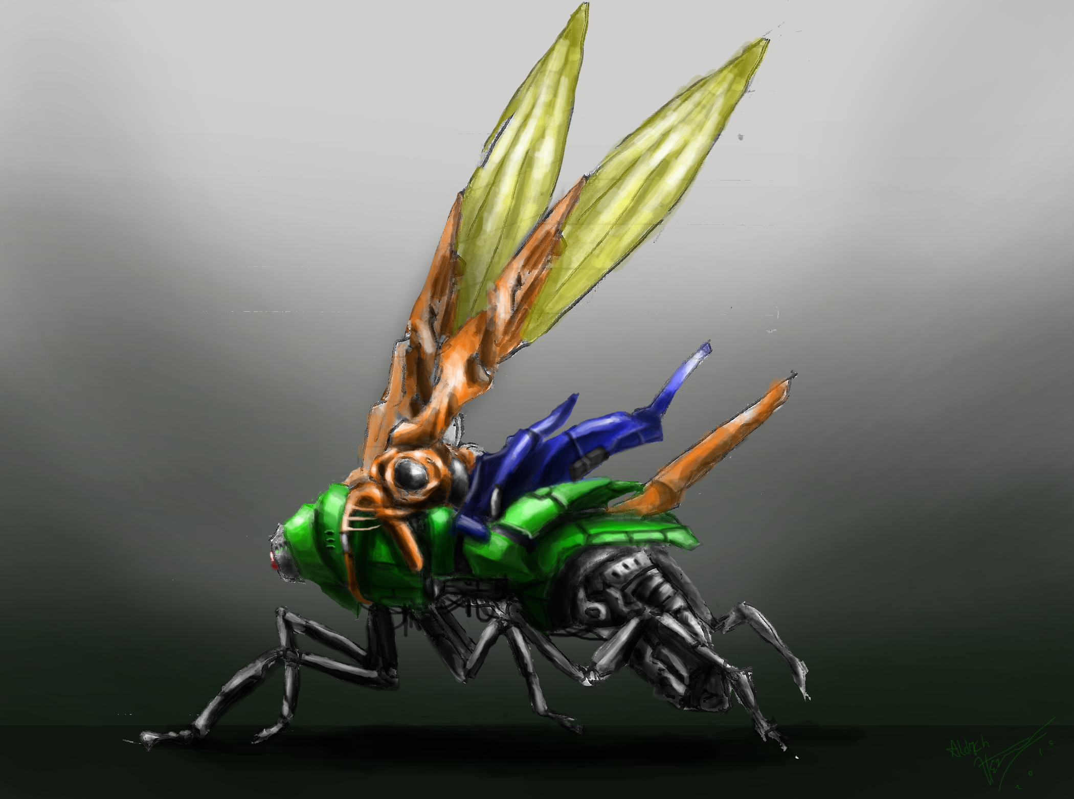 Drone wasp