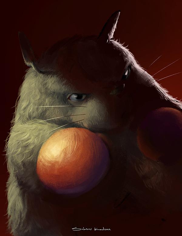 Totoro the Boxer