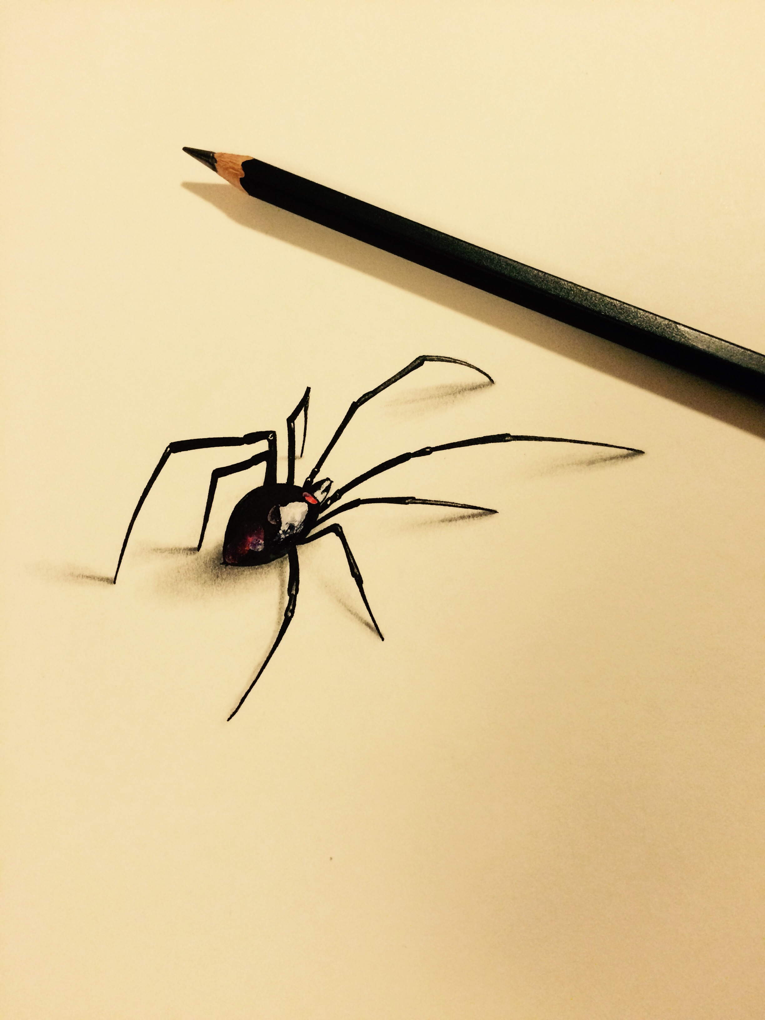 Spider of the page