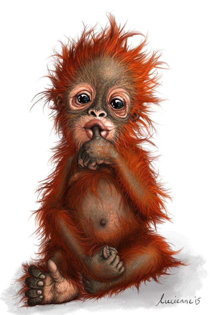 Little Orangutan