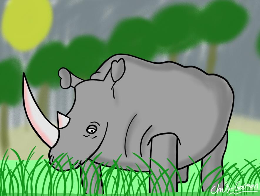 Rhino Digital Painting