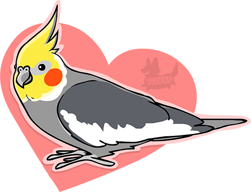 Cockatiel Sticker