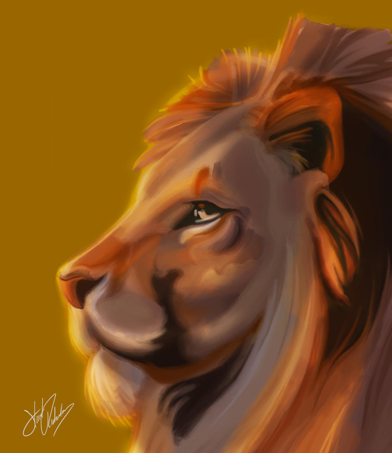 Lion at Dawn