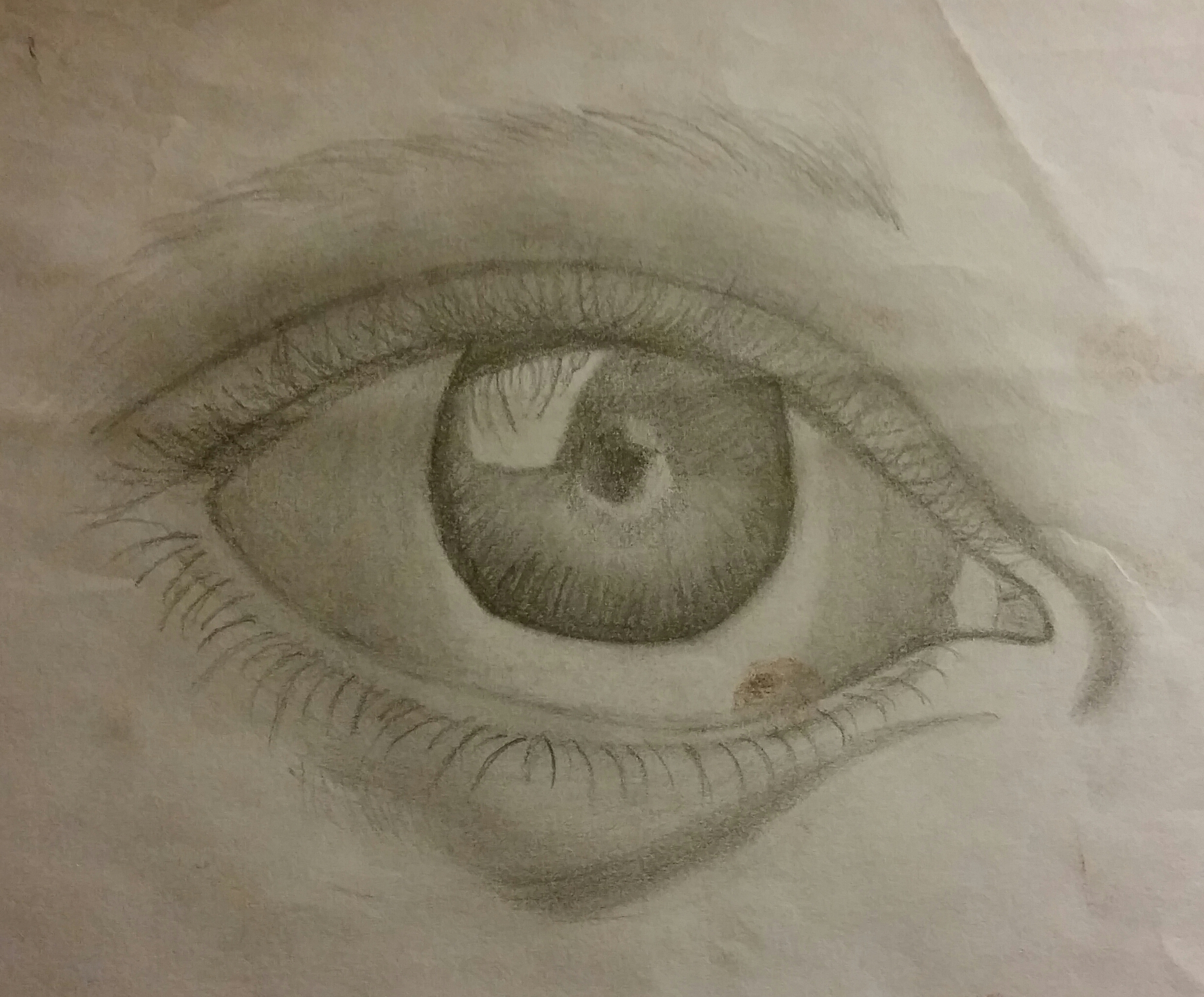 The Eye (in pencil)