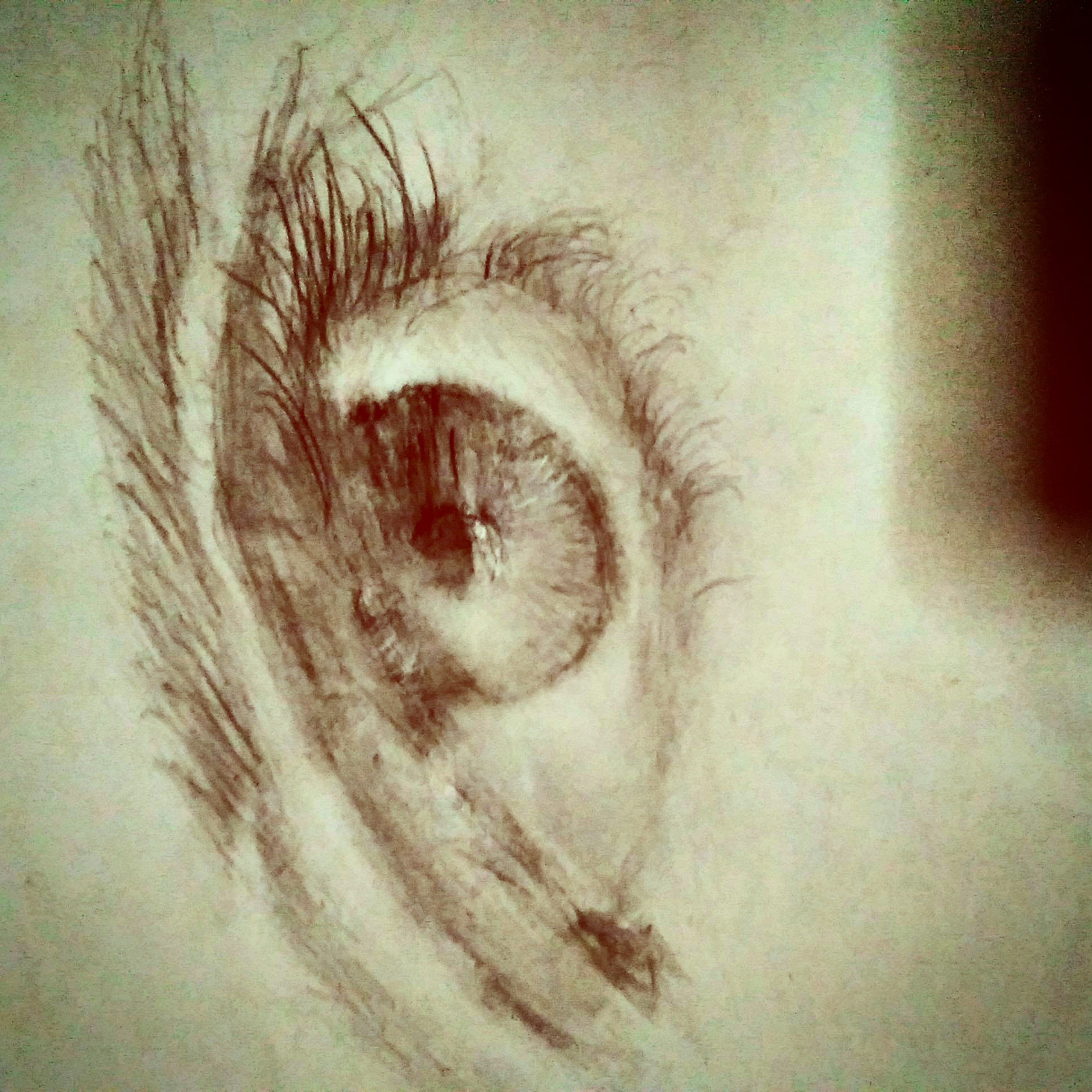 The Eye that sees all