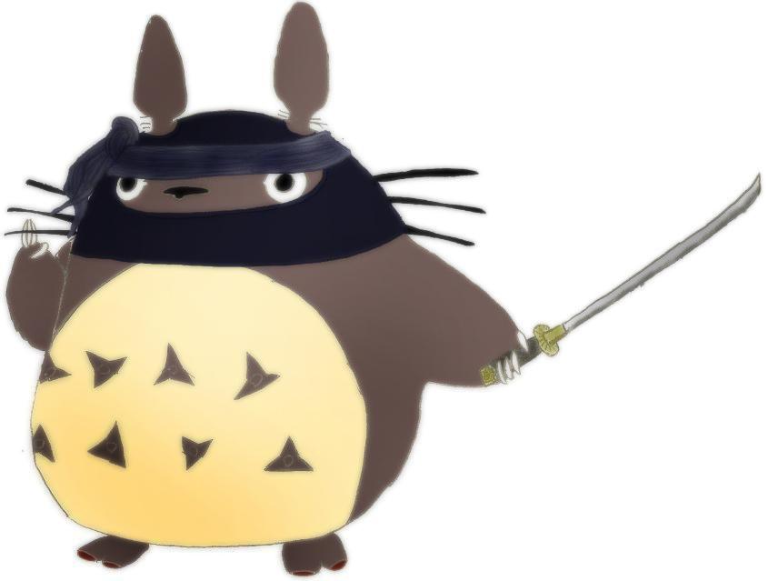 Ninja Totoro