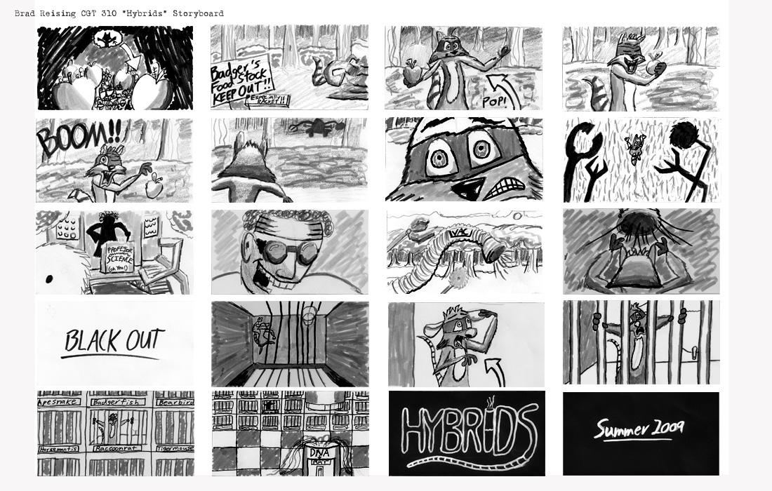 Hybrids Storyboard