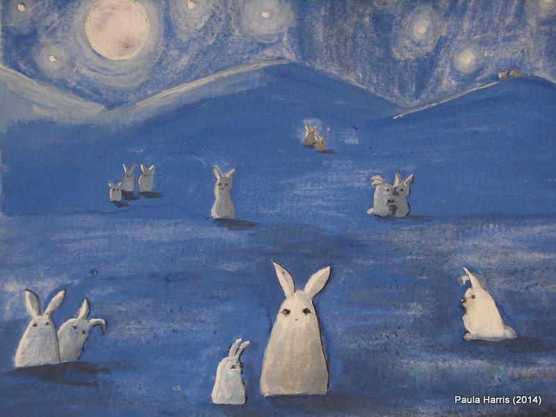 night bunnies