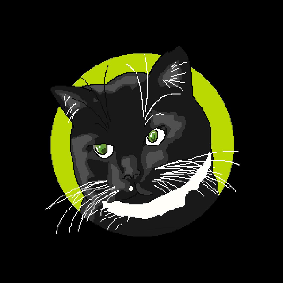 Pixel le chat