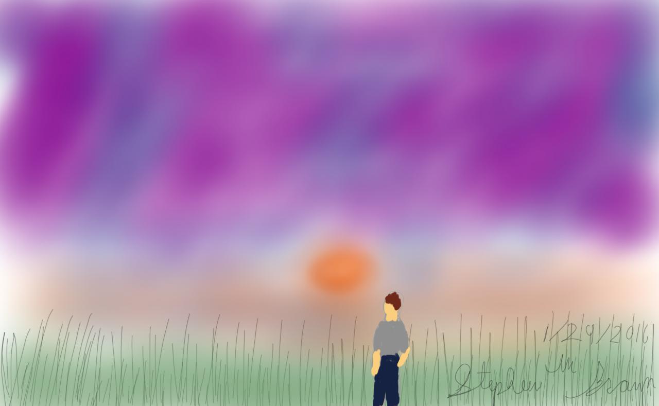 Grassy sunset plains