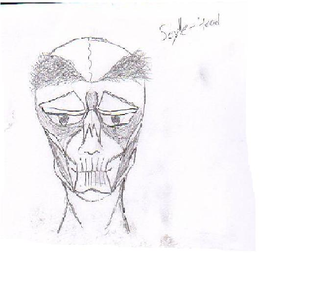 Scylle Head