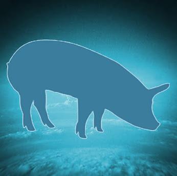 Dream of a blue pig