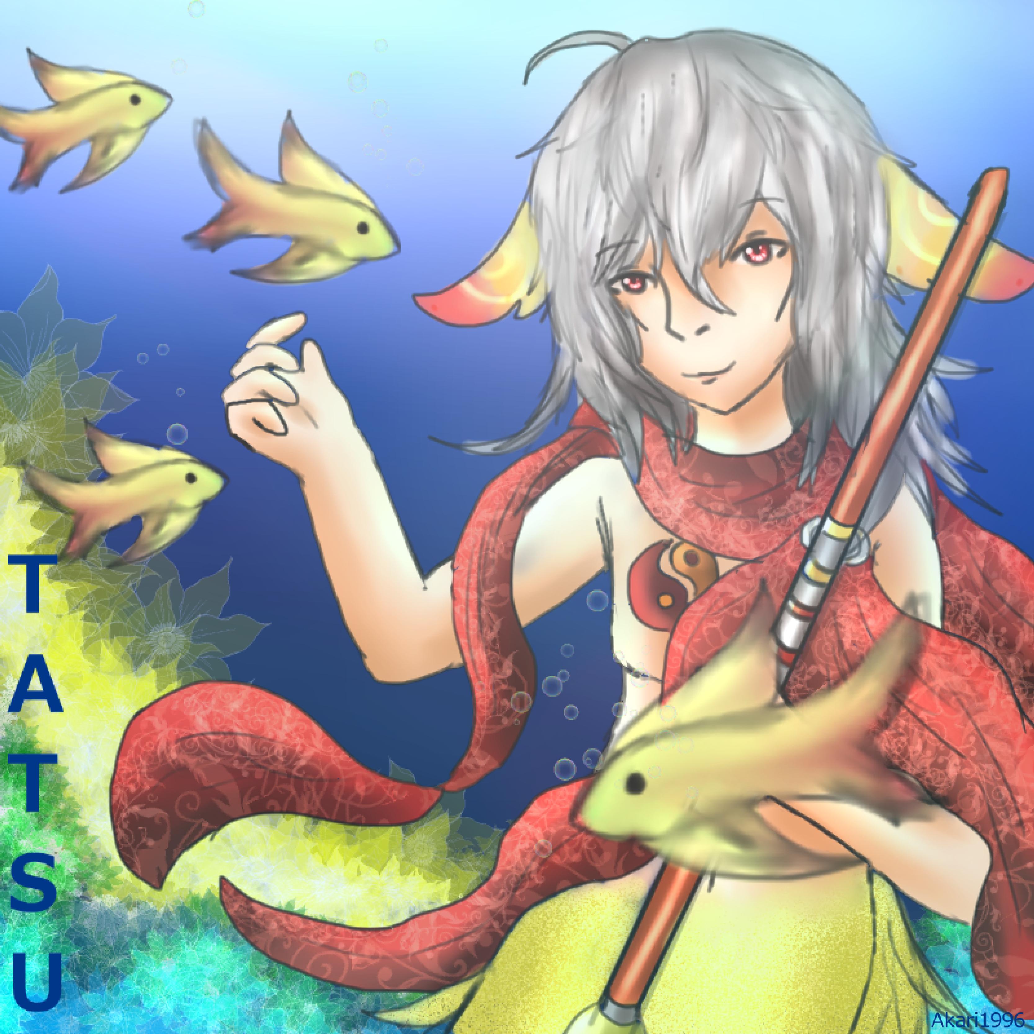 Tatsu-gift