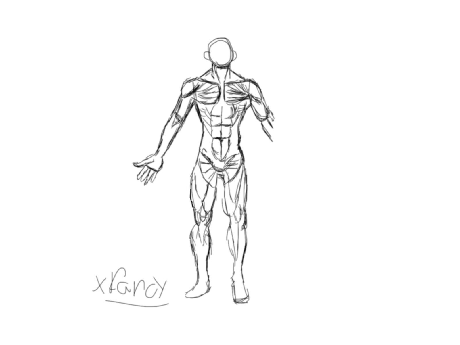 Sketch no 1.