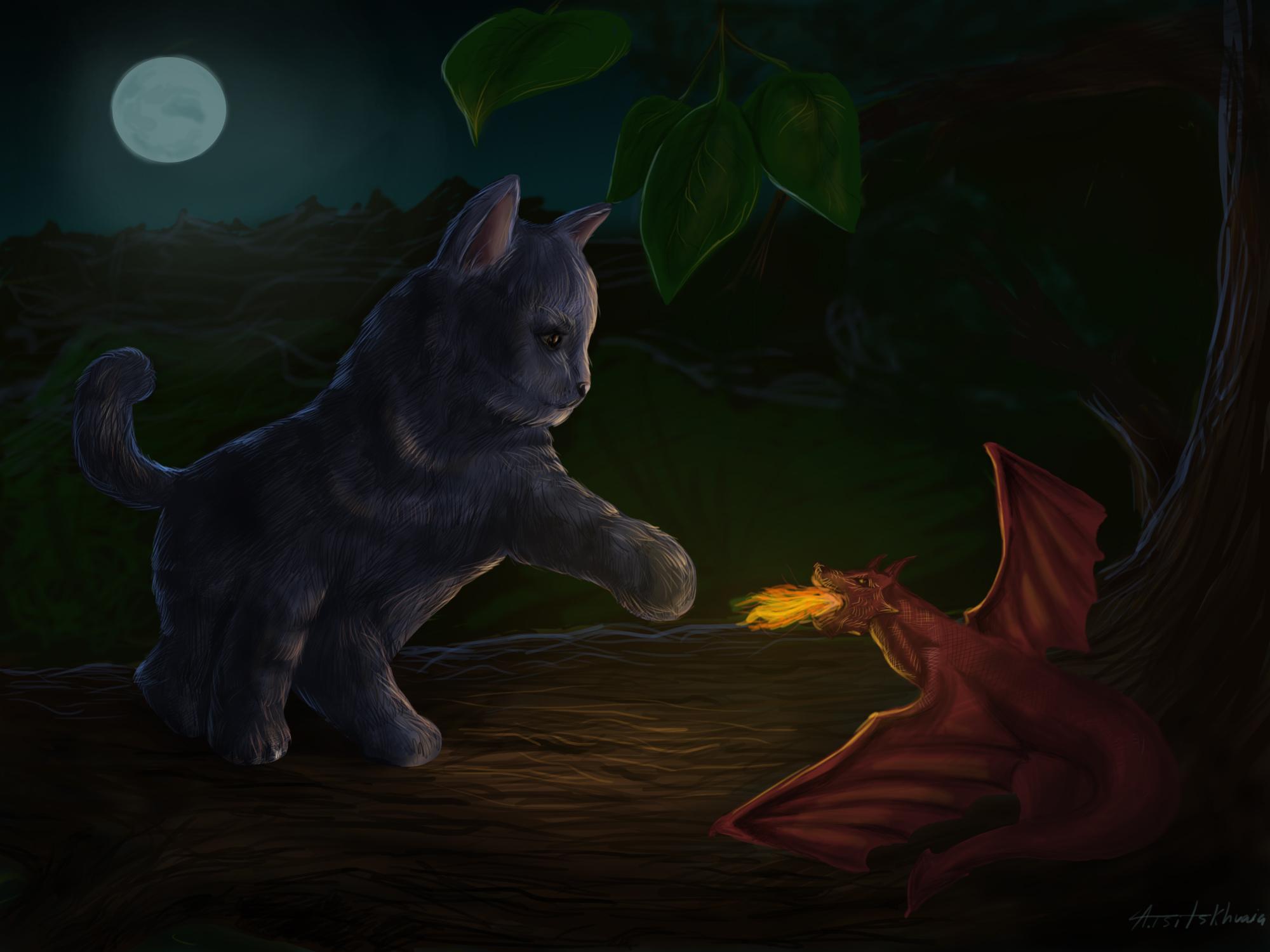DragonsvKittens