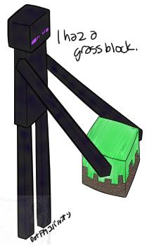 I haz a grass block.