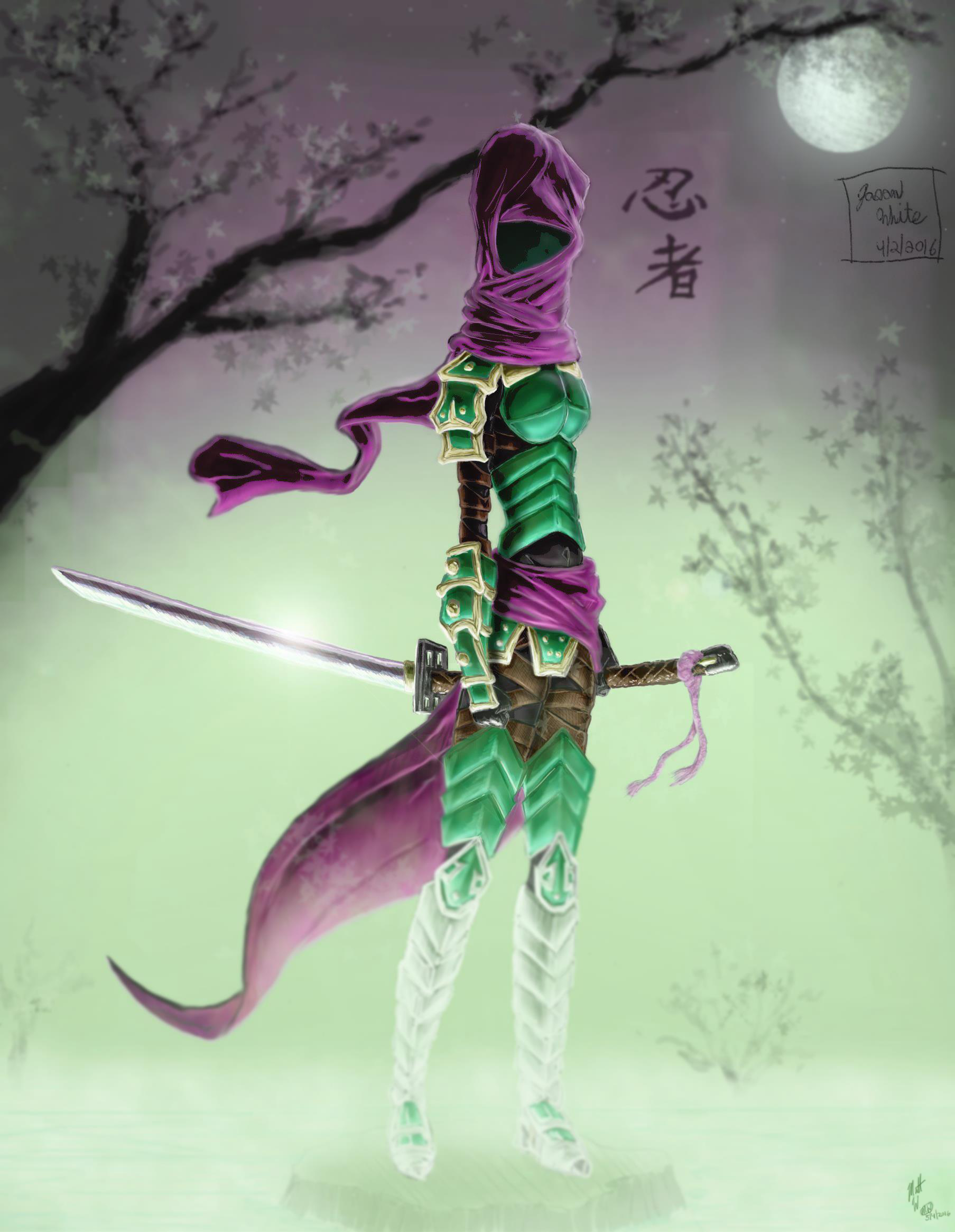 Armorded Ninja Girl