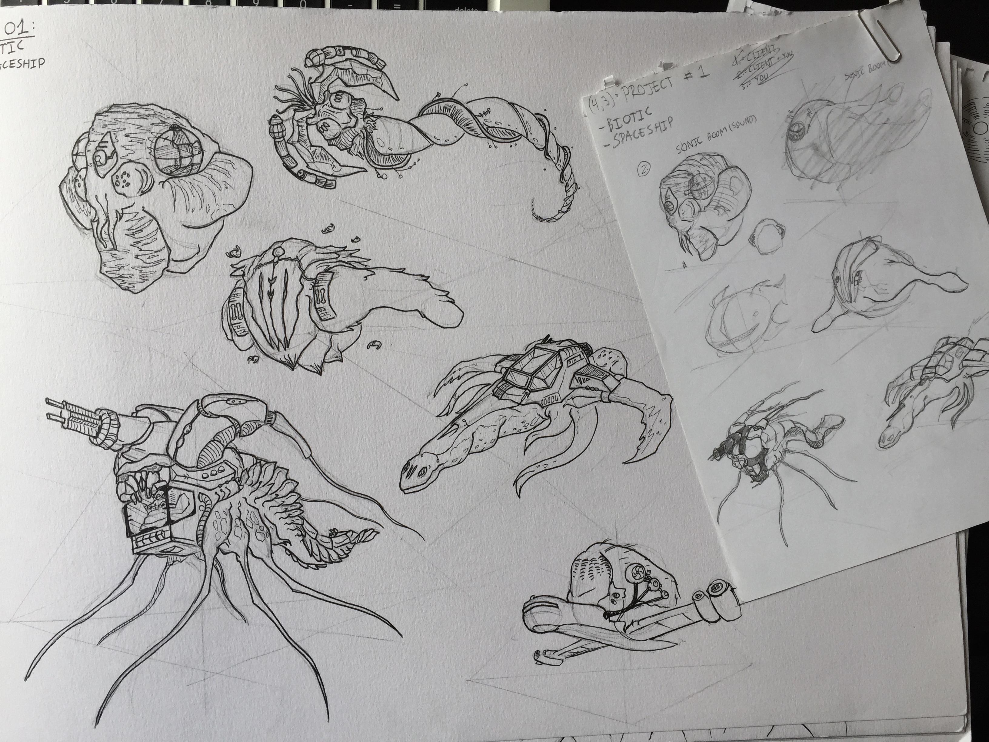 Biological Spaceship challenge concept art