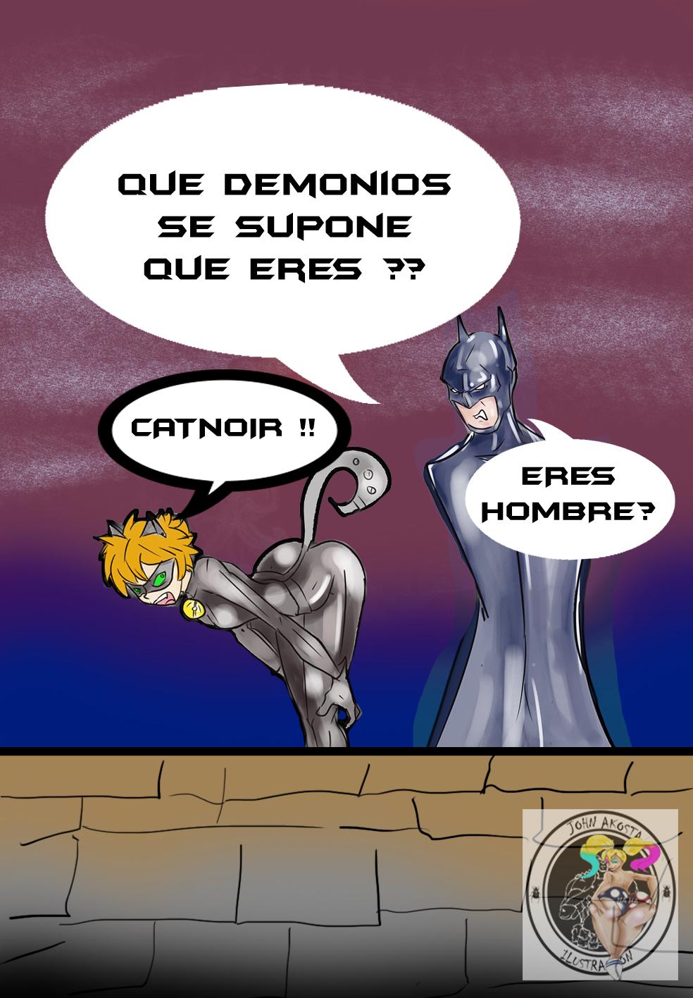 wtf catnoir