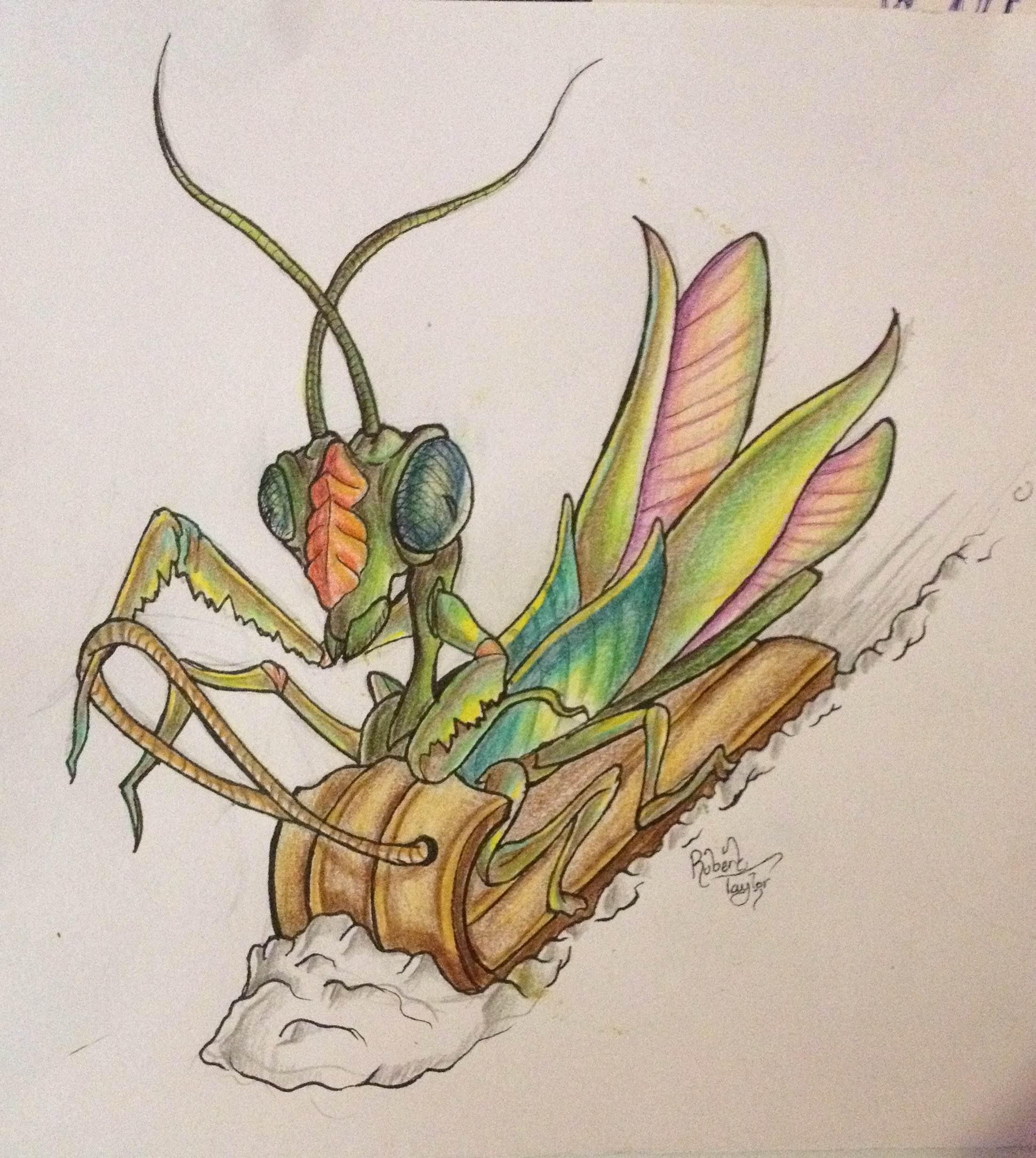 mantis toboggan