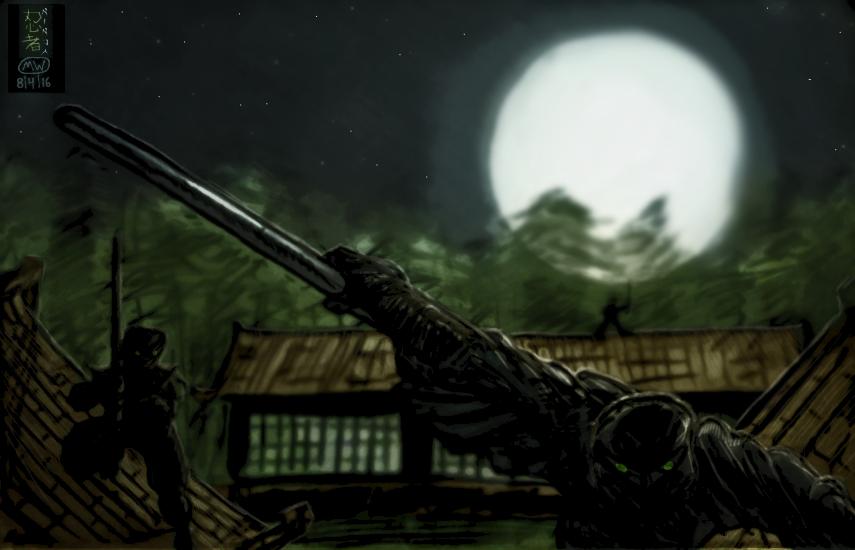 Ninja on roof