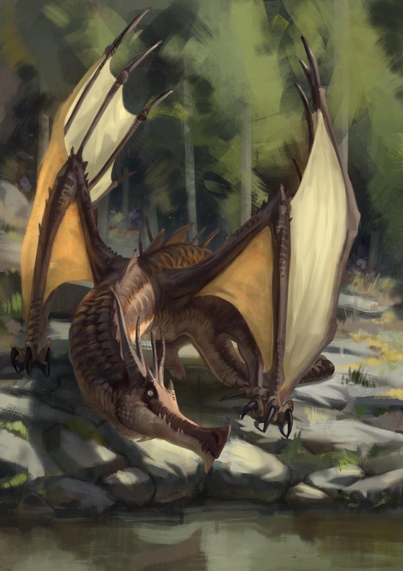 Dragon5556