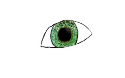 An eye...
