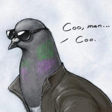 MLG Pigeon