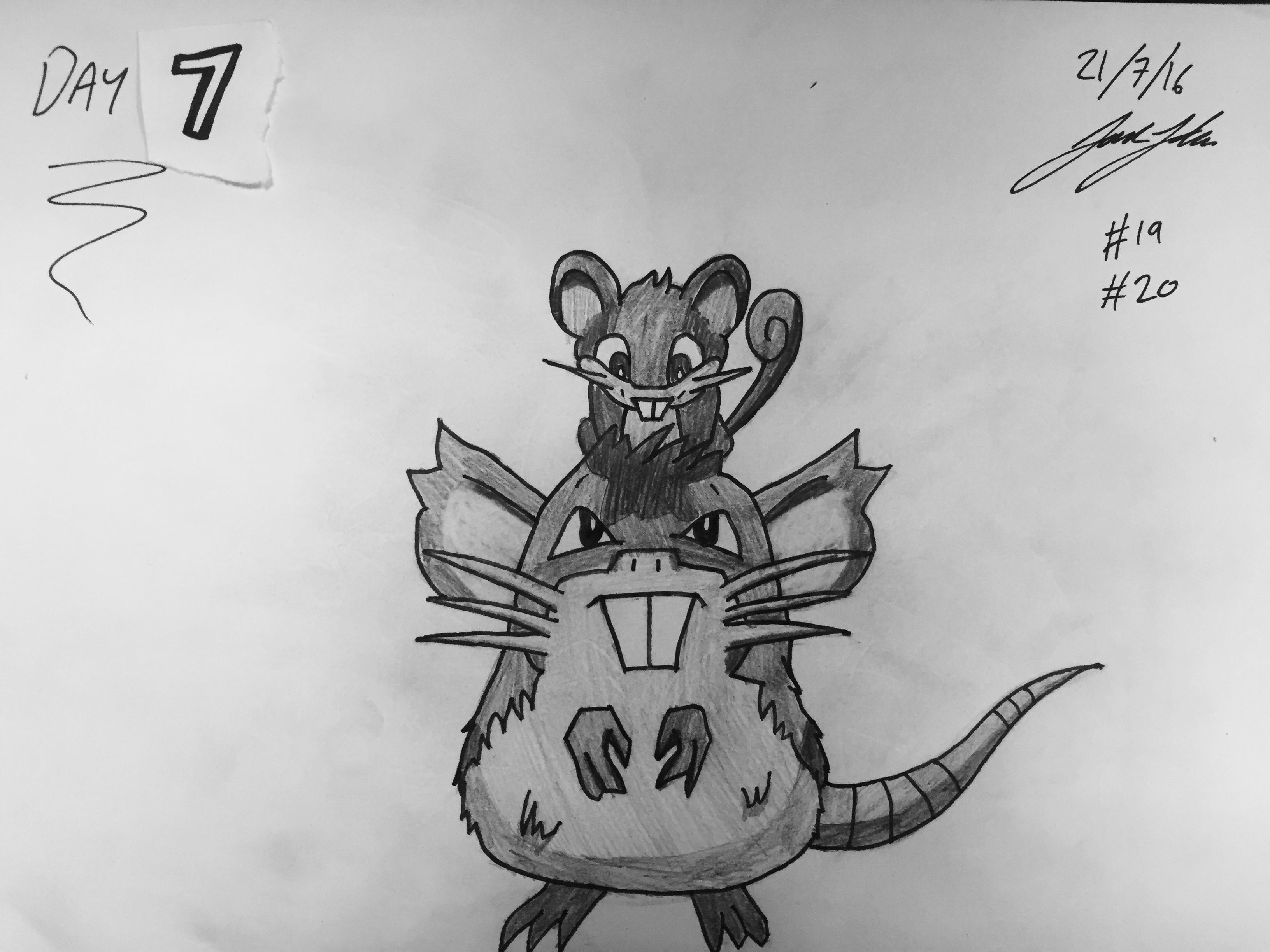 #19 Rattata #20 Raticate
