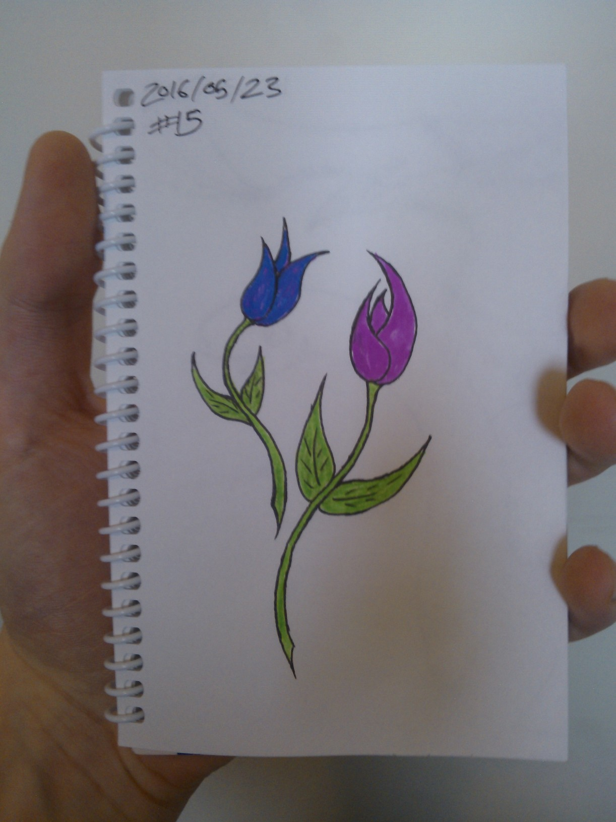 Every Day A Drawing #15: Flowers