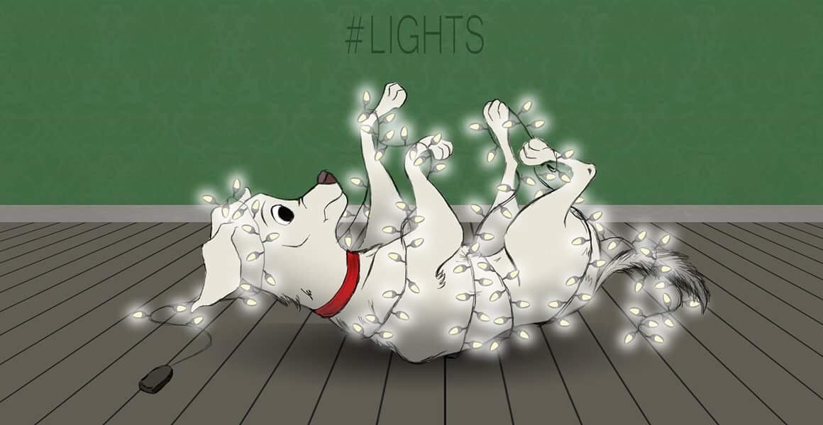 Christmas Dog1