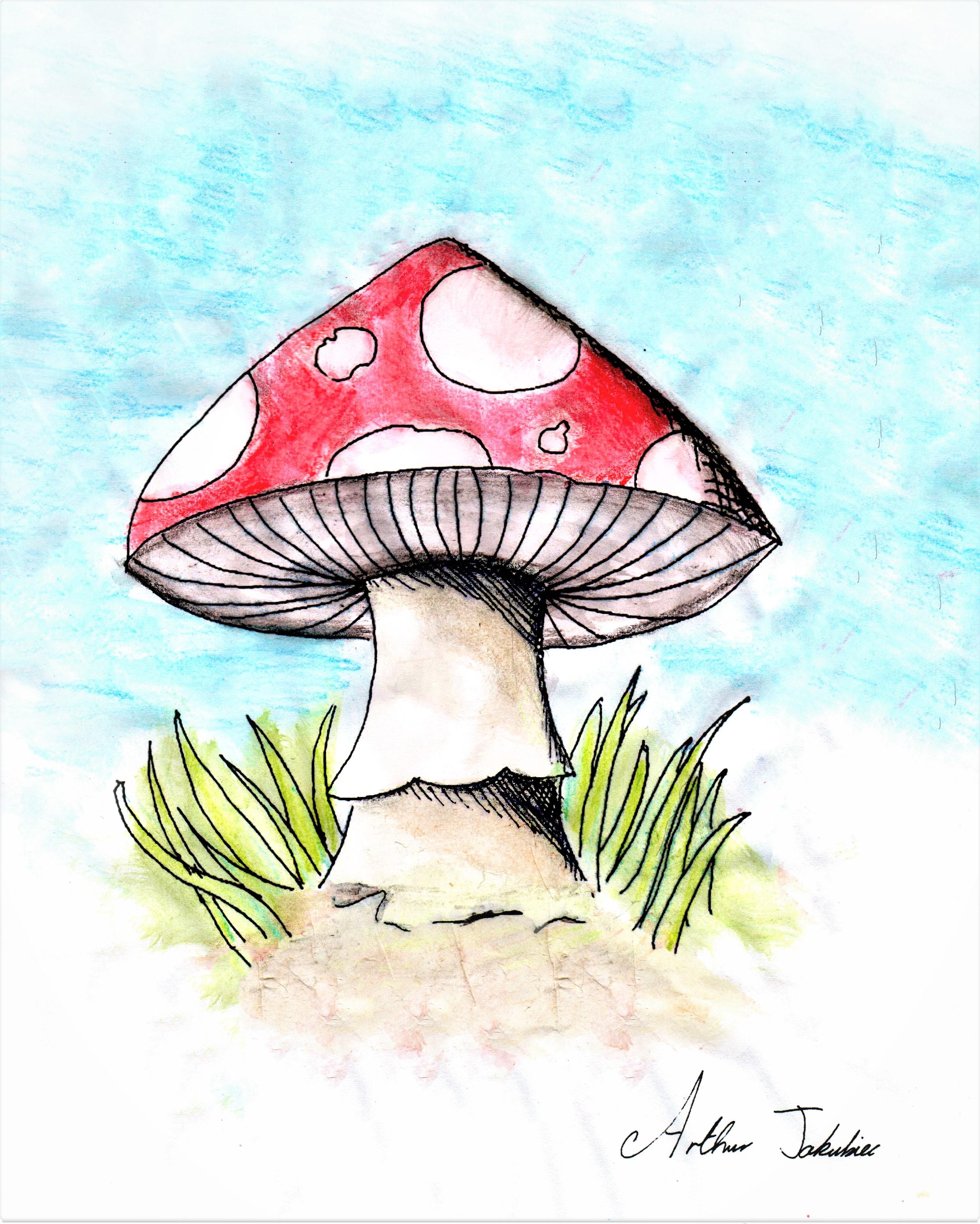 Also A mushroom
