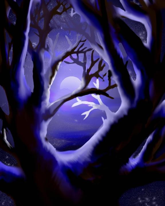 Moon lit tree