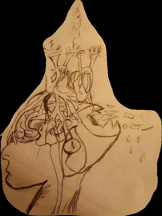 Doodles of Ear
