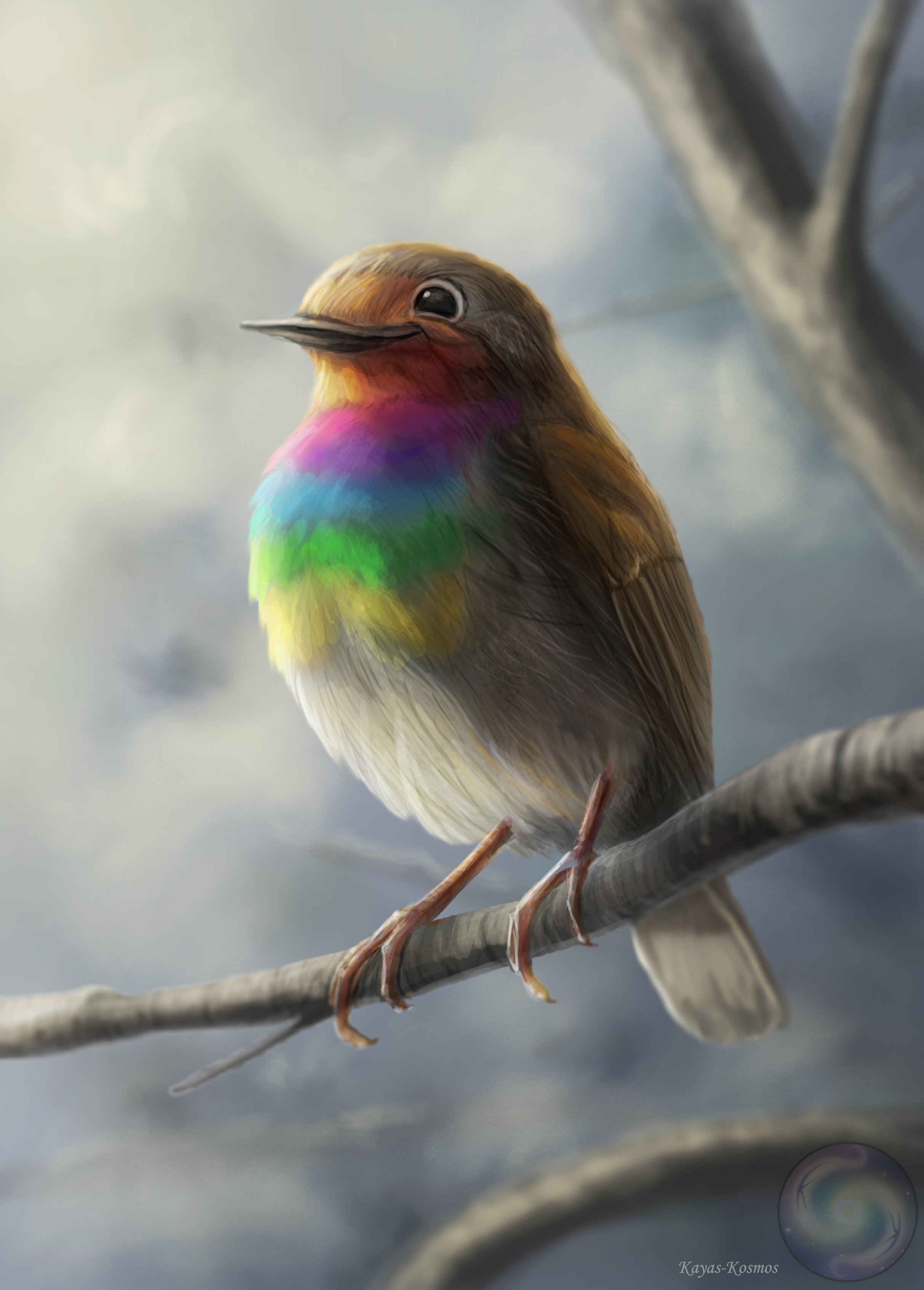 Robin rainbowbreast