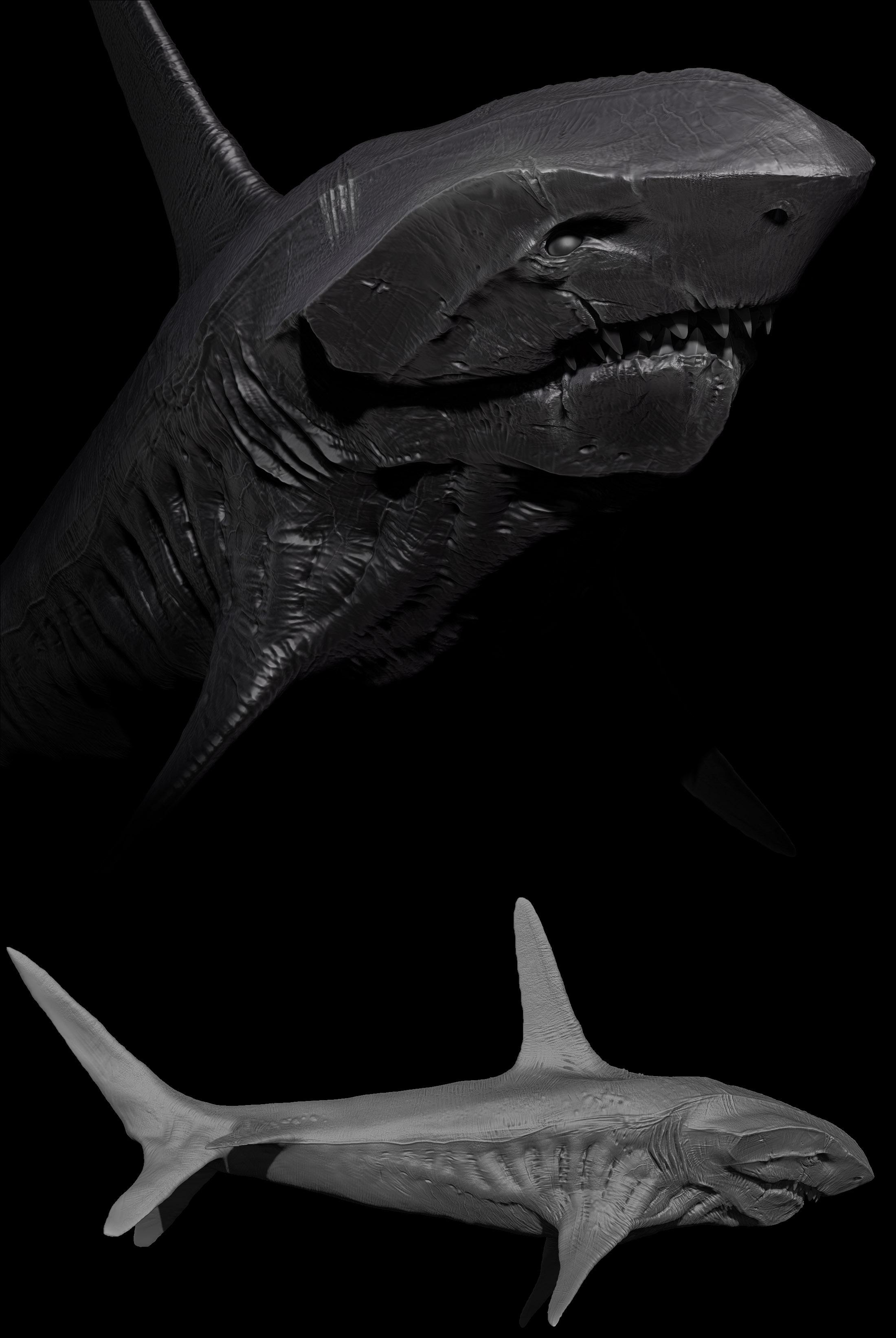 shark of sorts