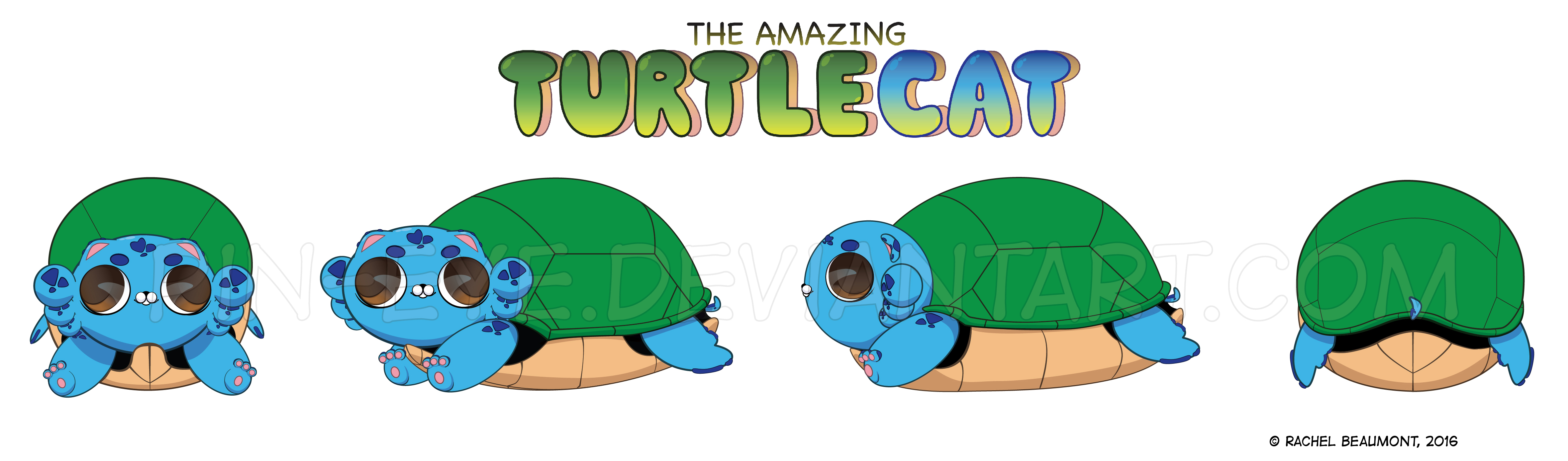 The Amazing Turtlecat - Turnarounds